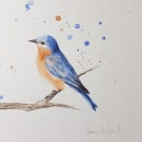 Mi Proyecto del curso: Acuarela artística para ilustración de aves. Um projeto de Ilustração de Marie de Smet - 08.03.2021