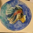 Acuáticos en acuarela . Un proyecto de Ilustración, Creatividad, Pintura a la acuarela e Ilustración con tinta de Brenda Oliva - 13.03.2021
