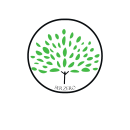 Proyecto tienda Shopify SerZero. Un proyecto de Marketing y Diseño Web de Yesenia Perez - 25.03.2021