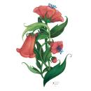 Floral Coral. Um projeto de Pintura, Ilustração botânica e Pintura guache de Cristina Bustamante Runde - 15.12.2020