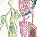 Aquarelando. Un proyecto de Ilustración de Mayara Botelho - 13.04.2018