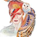 Pop art. Un proyecto de Ilustración de retrato de Soledad Delgado Oyarzún - 20.04.2021