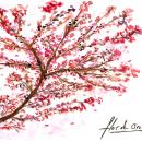 Mi Proyecto del curso: Cuaderno botánico en acuarela. Un proyecto de Bellas Artes y Pintura a la acuarela de Gino Sandrin - 22.04.2021