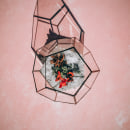 Terrario dodecaedro. Um projeto de Decoração de interiores de Camila Eterovic - 27.04.2021