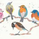 Meu projeto do curso: Técnicas expressivas de aquarela para ilustração de pássaros. A Watercolor Painting project by Walter Biazetti - 05.08.2021