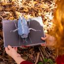 Mi Proyecto del curso: Libros pop-up interactivos: crea mundos de papel. Um projeto de Artesanato, Design editorial, Papercraft, Encadernação e Criatividade para crianças de Silvia Hijano Coullaut - 17.05.2021