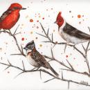 Mi Proyecto del curso: Acuarela artística para ilustración de aves. Um projeto de Ilustração, Pintura em aquarela, Desenho realista e Ilustração naturalista de Silvia Liliana Garavagno - 23.05.2021