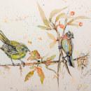 Mi Proyecto del curso: Acuarela artística para ilustración de aves. Um projeto de Ilustração, Pintura em aquarela, Desenho realista e Ilustração naturalista de Liliana Donato - 07.06.2021