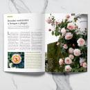 Maquetación y diseño editorial. Un proyecto de Diseño gráfico y Diseño editorial de Patricia Fdez Paquet - 19.06.2021