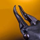 Prosopocoilus Serricornis, MACRO EXTREMO.. Um projeto de Fotografia, Fotografia de retrato, Fotografia de estúdio e Fotografia documental de Sergio Gómez - 25.06.2021