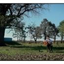 Brian Campos - Al Remo. Um projeto de Cinema, Vídeo e TV de Santiago Bianchi - 28.06.2021