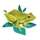 Fauna de los humedales. Um projeto de Ilustração, Ilustração digital, Ilustração botânica, Ilustração editorial e Ilustração naturalista de Dani Maiz - 24.06.2021