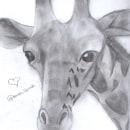 JIRAFA(≧∇≦)ノ. Um projeto de Desenho a lápis de kendra chalco - 06.07.2021
