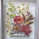 Mi Proyecto del curso: Técnicas básicas de prensado botánico. Um projeto de Artesanato, Artes plásticas, Colagem e DIY de Silvia Liliana Garavagno - 20.07.2021