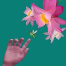 """El viaje de la última """"Arejita"""". Un proyecto de Fotografía, Diseño de personajes, Retoque fotográfico y Fotografía de retrato de Edy Esquivel - 23.07.2021"""