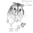 Hamster Chip. Un proyecto de Ilustración, Dibujo a lápiz y Dibujo de Daniel Márquez Cubarsí - 06.10.2020