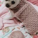 Roupinha para a minha chihuahua. Un proyecto de Crochet de Luiza - 01.08.2021