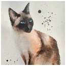 My project in Expressive Animal Portraits in Watercolor course. A Illustration, Aquarellmalerei, Realistische Zeichnung und Naturgetreue Illustration project by Dana Mikulcová - 08.07.2021