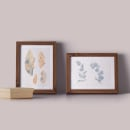 Mi Proyecto del curso: Ilustración de elementos naturales en acuarela. Um projeto de Ilustração, Pintura em aquarela e Ilustração naturalista de Claudia Valencia - 11.08.2021