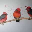 Mi Proyecto del curso: Acuarela artística para ilustración de aves. Um projeto de Ilustração, Pintura em aquarela, Desenho realista e Ilustração naturalista de Monica Jazmin Guardamino Salvador - 24.08.2021