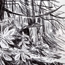 Sketches for client's cottage. A Fine Art, Sketching, Drawing, and Sketchbook project by Nathan Jurevicius - 09.13.2021