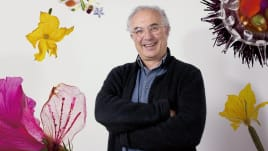 Fotografía gastronómica y retoque con Photoshop. Um curso de Fotografia e Vídeo de Francesc Guillamet Ferran