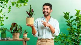 Lebhafte Dekoration mit Zimmerpflanzen. A Architektur und Raumgestaltung course by Daniel Virgnio