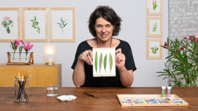 Realistische botanische Zeichnungen in Aquarell. A Illustration course by Nadia Leo