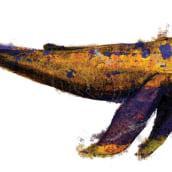 ballena oxidada. Un proyecto de Ilustración de Fran Villano Sánchez - 15.10.2014