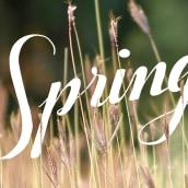 Spring. Um projeto de Caligrafia e Ilustração de marta B. - 22.03.2014