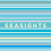 Sea Sights. Um projeto de Ilustração, Direção de arte e Design gráfico de Gonzalo Sainz Sotomayor - 03.01.2016