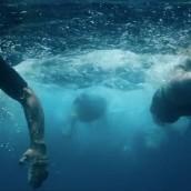 San Miguel 0,0% Isotónica by Alberto Blanco. Um projeto de Cinema, Vídeo e TV, Publicidade e Vídeo de BLUR Films - 31.08.2016
