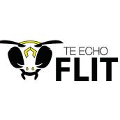 Te echo flit (servicio de fumigación). Un proyecto de Diseño gráfico de Ana Michelle Guerra - 21.02.2017
