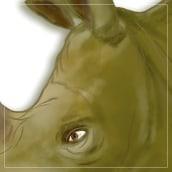 Rhino plastic. Un proyecto de Ilustración de Marcelo Gaitan Olano - 15.06.2017
