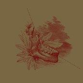 Caída del búfalo sin nombre - Collage. Um projeto de Ilustração de Coral Medrano - 26.10.2017