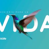 i4life. Imagen corporativa. Um projeto de Br, ing e Identidade e Design gráfico de Manuel Persa - 27.06.2018