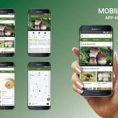 App Android. A Design und UI / UX project by Olga Fernández García - 13.10.2018