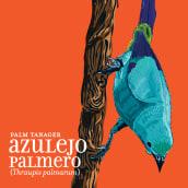 Calendario Aves de Medellín. Un projet de Illustration, Conception éditoriale , et Design graphique de Carlos J Roldán - 16.10.2017