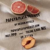 Papaya Playa Project. Un progetto di Br e ing e identità di marca di Futura - 23.03.2019