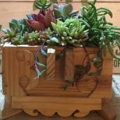 Mi Proyecto del curso: Diseño y creación de composiciones botánicas. Un projet de Design  de geyddy_17 - 01.08.2019