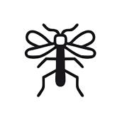 Querido mosquito. Um projeto de Concept Art e Design de produtos de Carmen Montiel Ramón - 15.08.2019