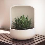 Colección Essencials . A Crafts, Product Design, Decoration, and Ceramics project by Xènia Bas - 09.20.2019