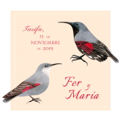 Ilustración para Invitación de Boda. Un proyecto de Ilustración de María León - 15.11.2019
