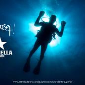 Campaña Estrella Damm y Qbosq. Un proyecto de Diseño gráfico y Marketing de David Muñoz del Sastre - 01.08.2019