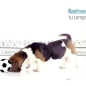Rastreator 6K. Um projeto de Vídeo de Sergio Marquez - 13.01.2020