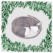 Aletargado. Un proyecto de Ilustración de María León - 01.02.2020