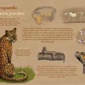 Mi Proyecto del curso: el leopardo (Panthera pardus). Un proyecto de Ilustración digital de 3balonsoirene - 10.04.2020