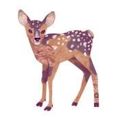 My project in Digital illustration with coloured pencils course. Un proyecto de Ilustración digital y Dibujo digital de Monika Klicz - 19.04.2020