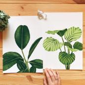 Colección Botánica Dos. A Illustration, Digital illustration, and Botanical illustration project by Isabela Quintes - 08.28.2019
