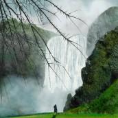 Mi Proyecto del curso: Pinceles y pixeles: introducción a la pintura digital en Photoshop. Un proyecto de Concept Art, Brush painting y Pintura digital de Nicolás Romero - 05.05.2020